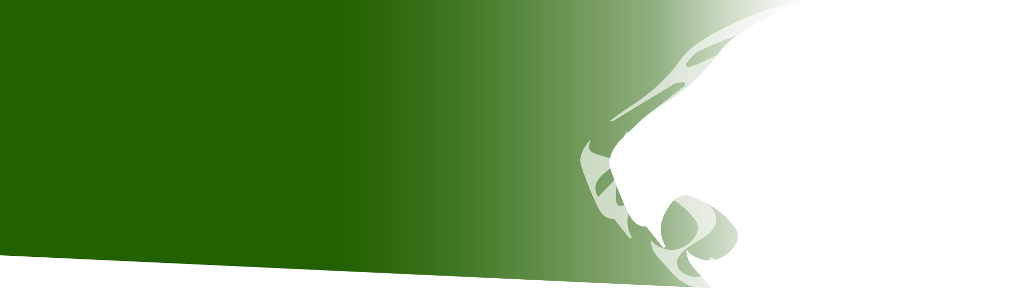 Green banner with white Panthera panther head overlay